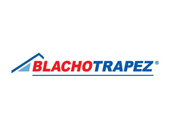 Фальцевая кровля Blachotrapez