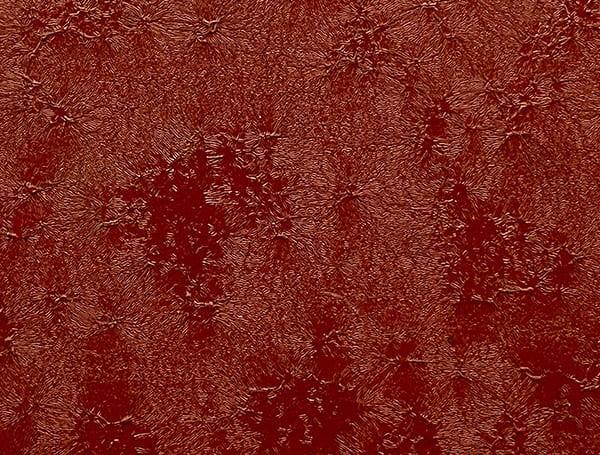 Pladur Relief IceCrystal производства Blachotrapez производства Thyssenkrupp (Германия)